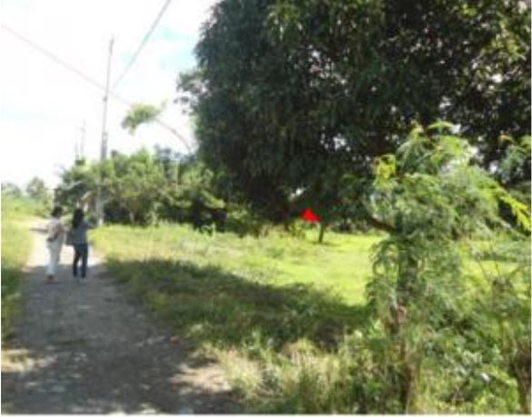 Lot 7, Pcs-04-011642, Sitio Pacita, Sta. Catalina Sur